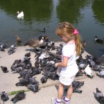 Amara feeding the ducks and pigeons