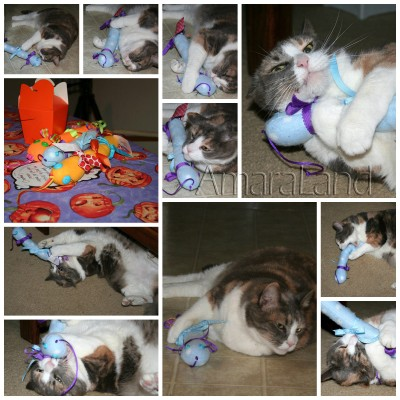 Twursula Catnip Collage