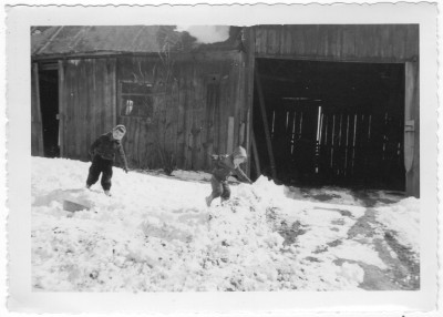 Playing in the snow in front of the old barn 1954