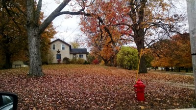 The house I grew up in with the fire hydrant out front.